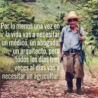 Campesino | Agricultor, Frases para abogados, Frases de agricultura