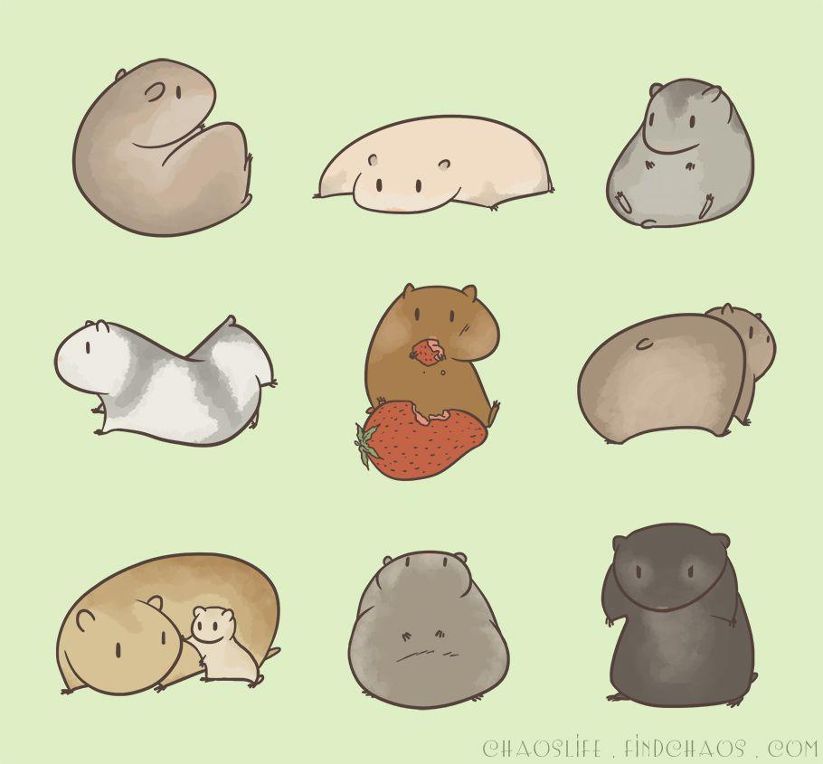 Cute Kawaii Dwarf Hamster Cartoon Girls Case Mate Iphone Case Zazzle Com In 2021 Hamster Cartoon Hamster Cartoon Wallpaper Iphone