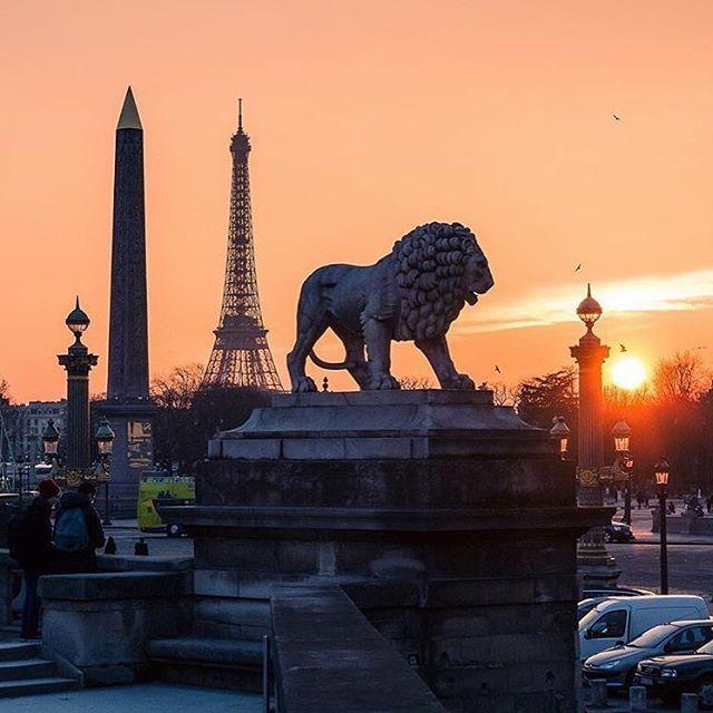 Place de la Concorde - para tirar lindas fotos de Paris, especialmente a tarde com o pôr-do-sol. Estação de Metrô mais próxima : 🚇 Concorde - Linhas 1, 8 e 12. 📸 © @wonguy974