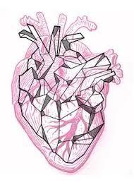 Resultado De Imagen Para Corazon Real Dibujo Dibujos Pinterest