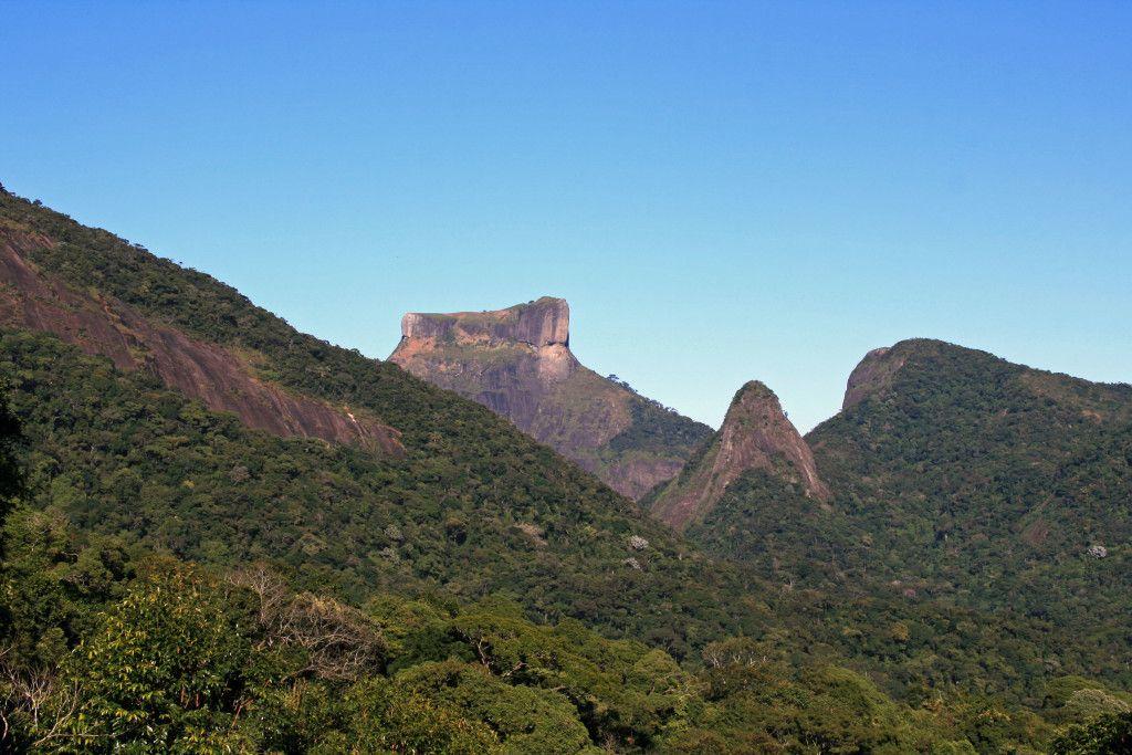 Floresta da Tijuca, Rio de Janeiro - 9reasons to visit Rio de Janeiro http://cristinaraducu.com/2015/04/14/9-reasons-for-loving-rio/#more-145