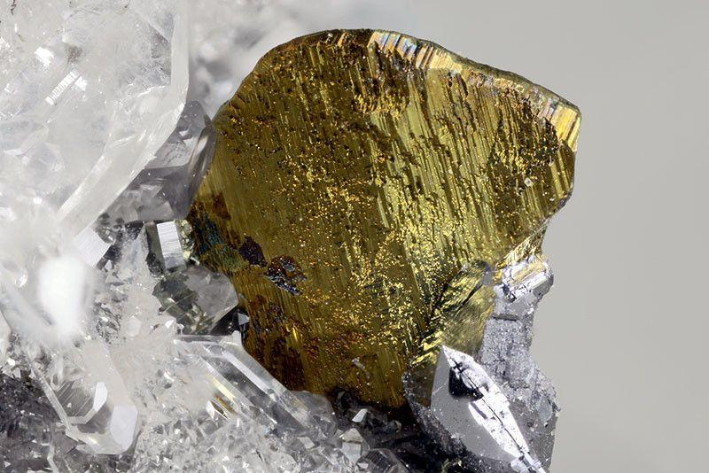 Chalcopyrite, CuFeS2, Monte Colma , Taggia Imperia Province, Liguria Region, Italy. Size: 1.96 mm. Copyright : Matteo Chinellato
