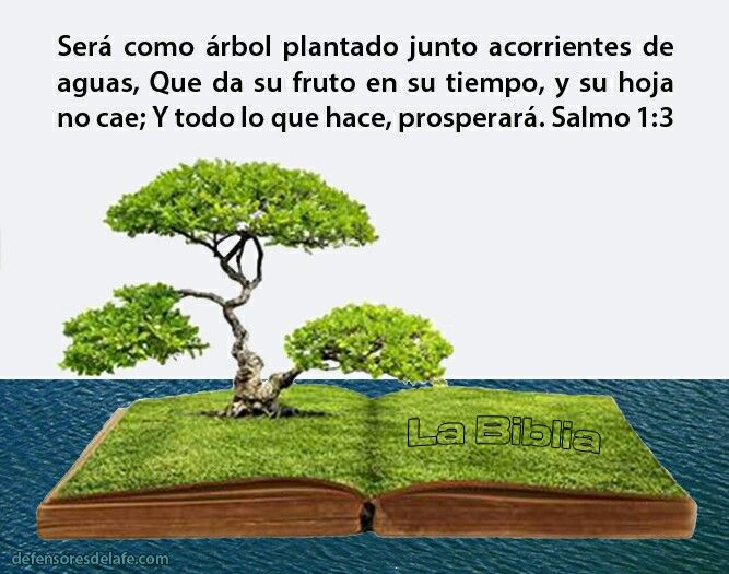 Good Salmos