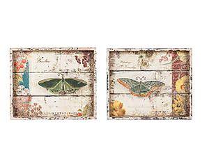 Set de 2 cuadros Mariposa – 44x37cm