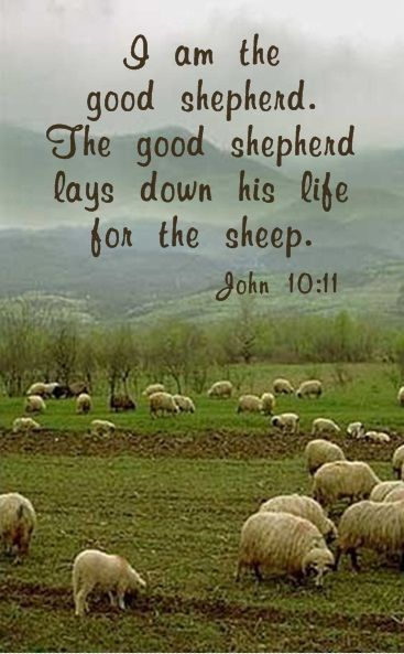 Pin By Joy On You Re Not Alone Jesus Loves You Bible Verses New