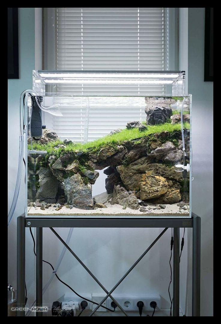 5 Fabulous Ideas For Landscaping With Rocks Aquarium Einrichten