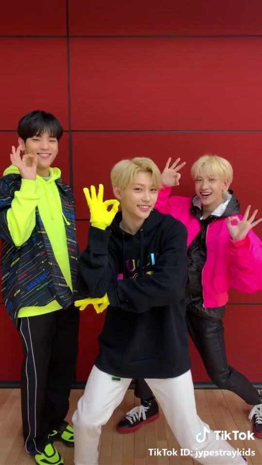 Stray Kids - Woojin / Felix / Bang Chan - TikTok Miroh challenge video @jypestraykids