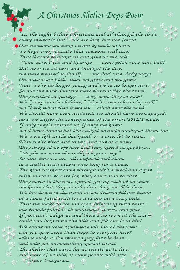 A Christmas Shelter Dogs Poem Dog Poems Animal Poems Animal Shelter