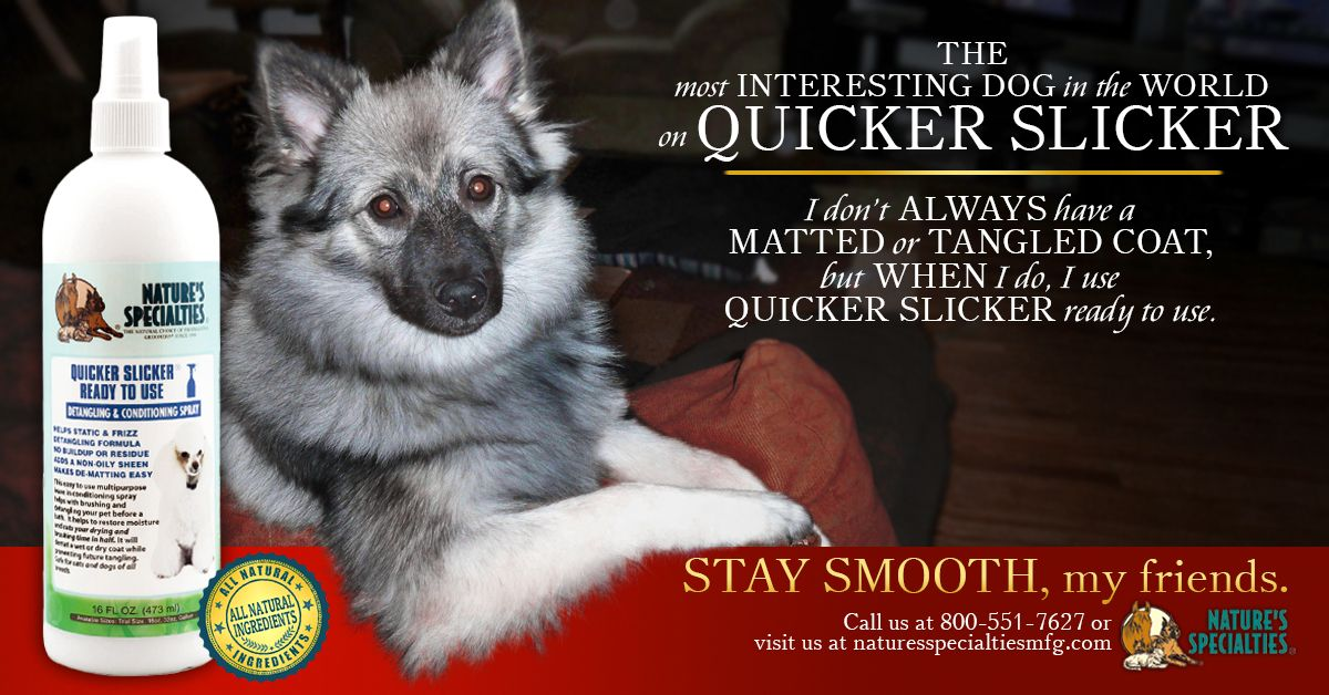 Check Out Our Quicker Slicker Conditioning Dematting And