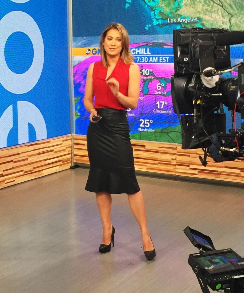 Ginger Zee Hot Pics inside theory top, bailey 44 skirt   my wardrobe purchases   pinterest