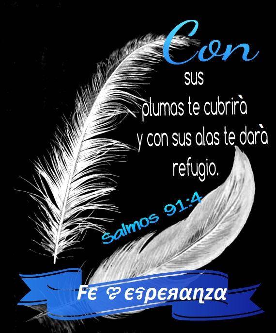 con sus plumas te cubrirá y con sus alas te dará refugio. Salmos 91:4