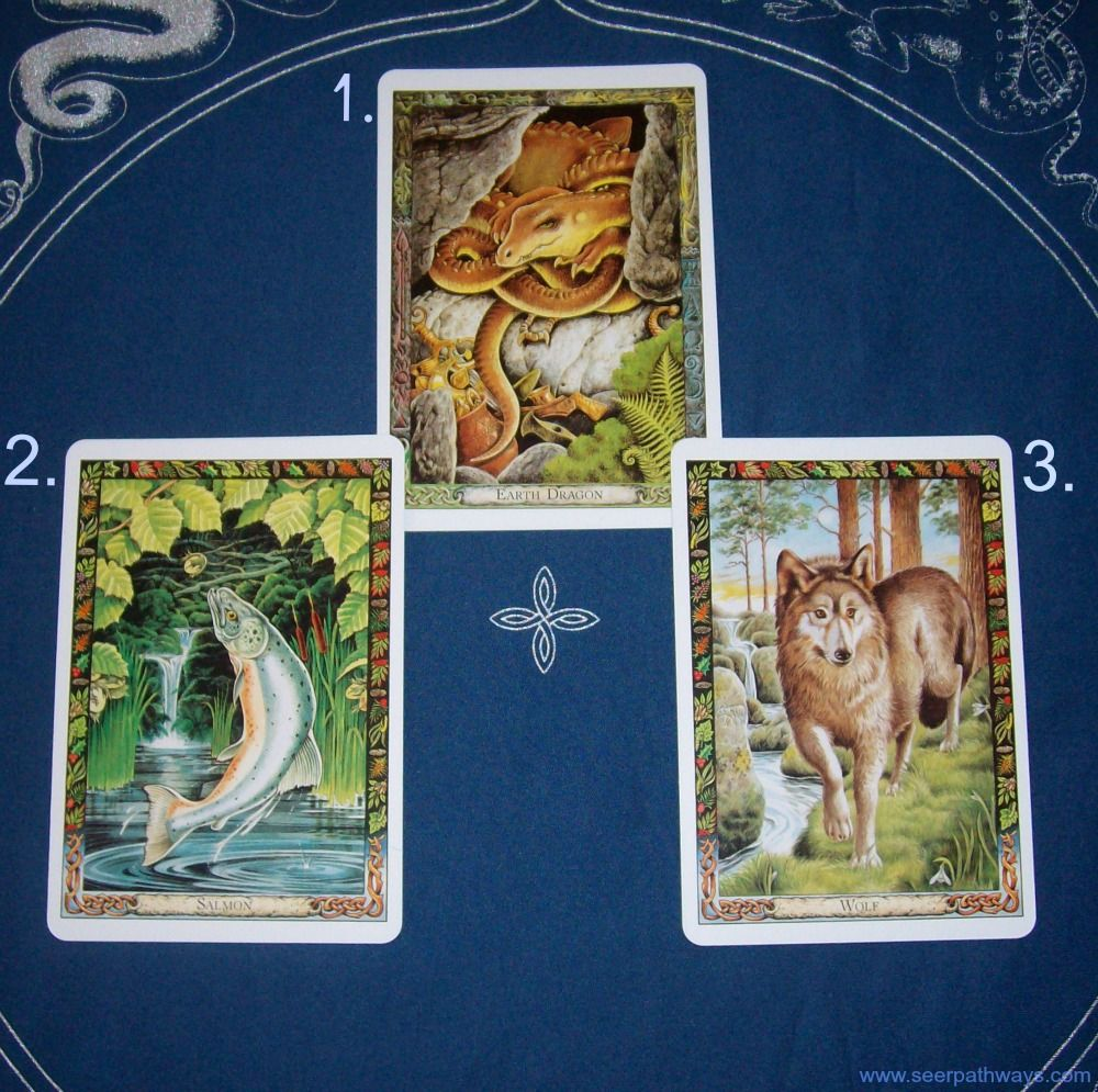 Archangel michael reading with the druid animal oracle