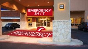 02 Emergency2 Emergency Vet Veterinary Care Pet Health