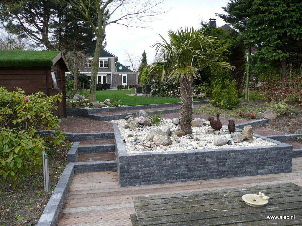 Grote Moderne Tuin Met Zwembad Gardening Backyard Backyard Garden