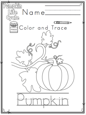 Life Cycle of a Pumpkin from Preschool Printables on