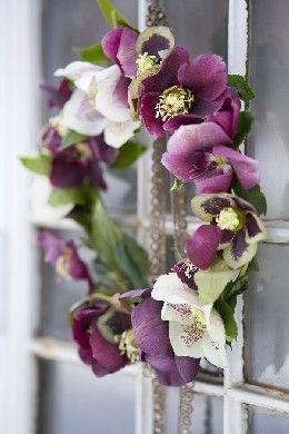 hellebore wreath for church doors -- courtesy blomsterverkstad
