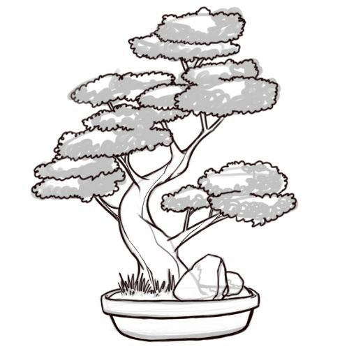 How To Draw A Bonsai Tree 8 Steps With Pictures Wikihow