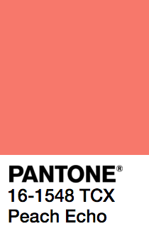 PANTONE SOLID UNCOATED   Color   Pantone, Pantone swatches