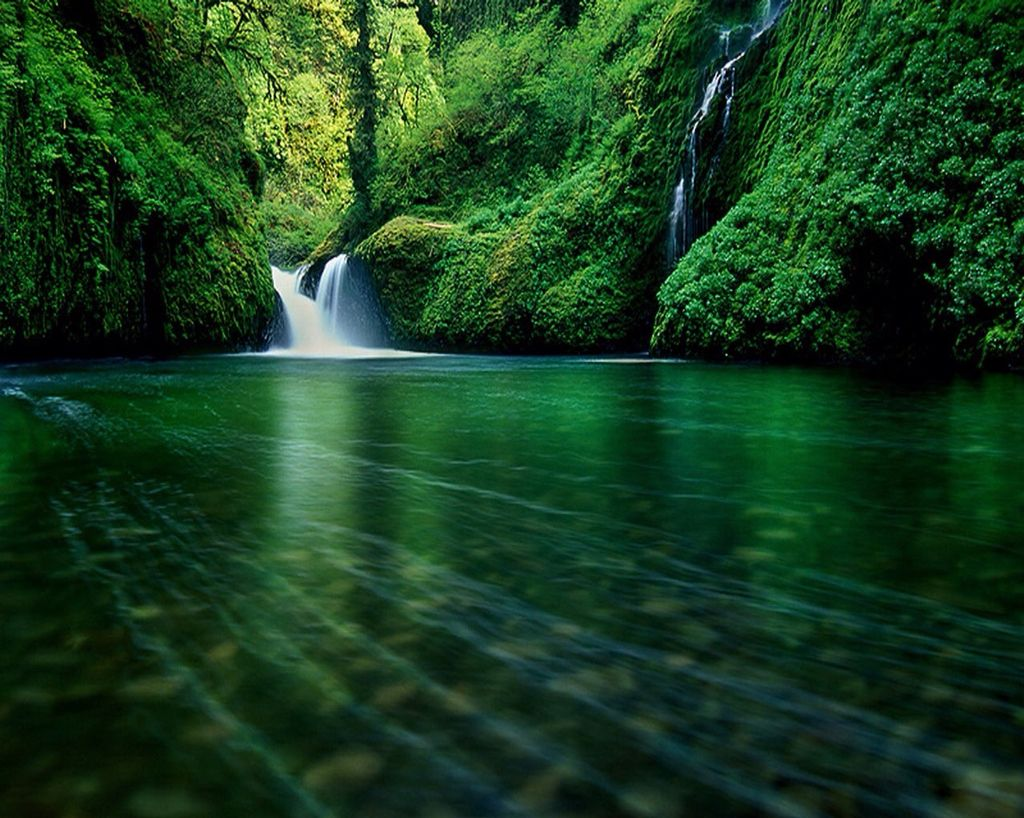 Green Waterfall With Trees Waterfall Waterfall Wallpaper Forest Waterfall