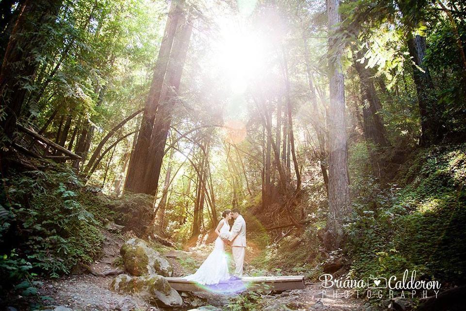 Saratoga Springs Wedding Venue In CA