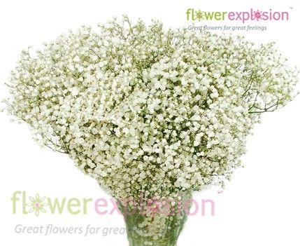 Mirabella Gypso Cheap Wedding Flowers Simple Wedding Flowers Orange Wedding Flowers