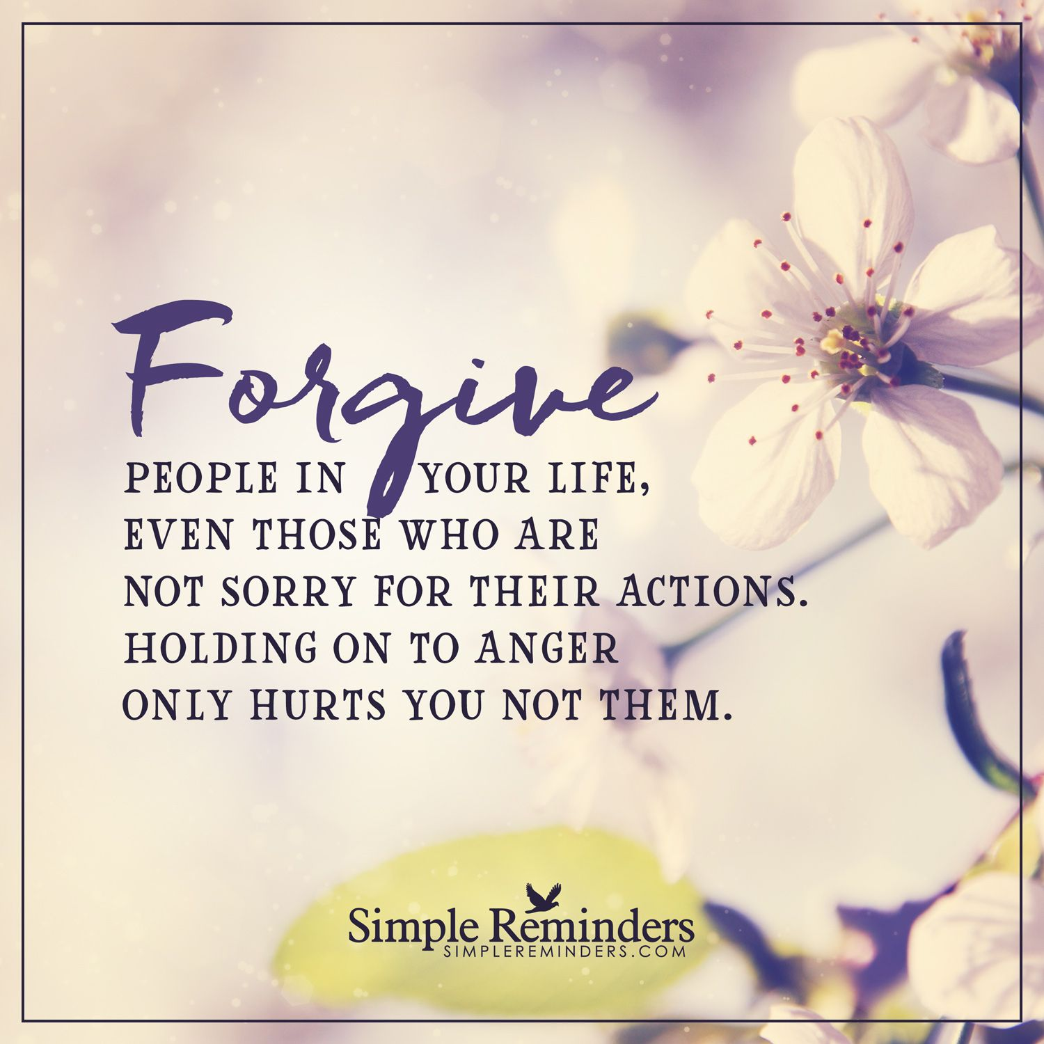 Inspirational Quotes About Positive: Forgive People In Your Life Forgive People In Your Life