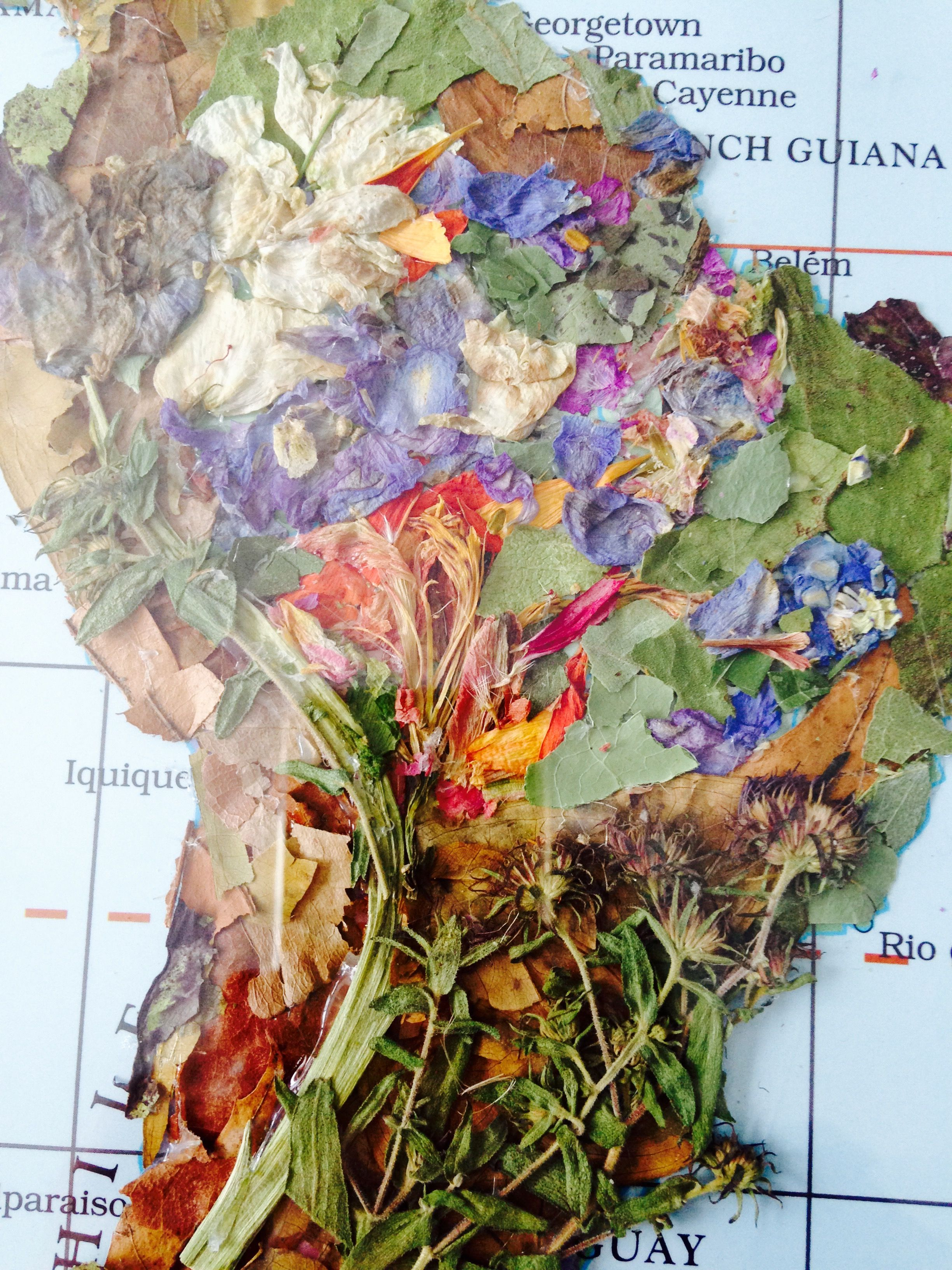 I am breathing life back into maps. A geographic map shows