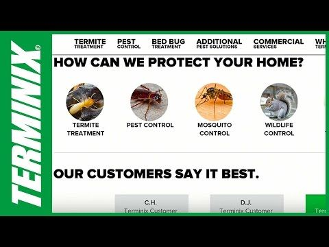 Protect Home From Pests  How Does A Pest Control Plan Work