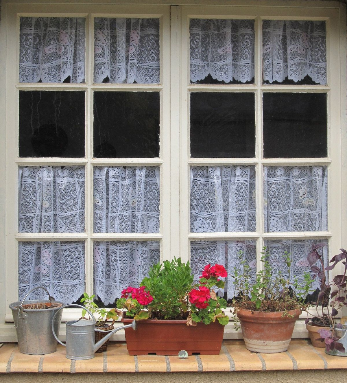 French Lace Kitchen Curtains Outdoor Kitchens Las Vegas Cafe White Curtain For The Style