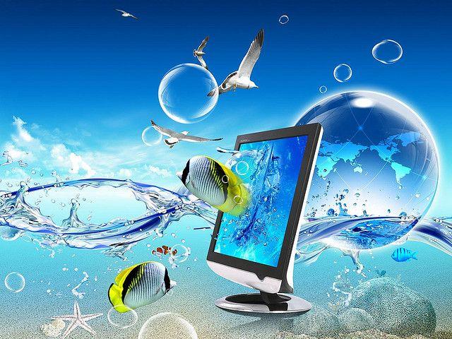 Carrie Mcgann S Favorites Beautiful Wallpaper Hd Underwater Wallpaper Wallpaper Pc