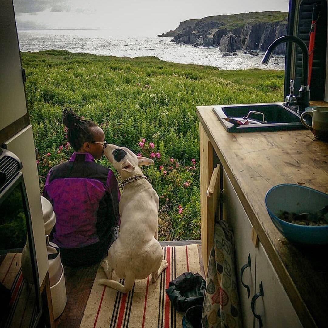 Vanlife By Vanlifers On Instagram Bishfotosafari Puppy Love Vanlifers Vanlife Promaster Newfoundland Van Life Campervan Interior Campervan Rental