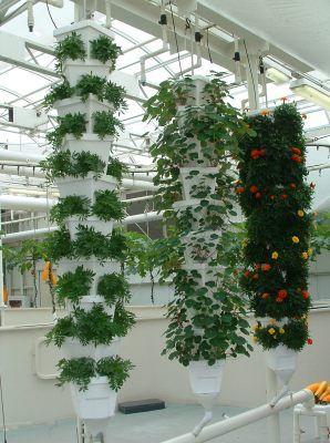 Vertical hydroponics gardens garden pinterest for Jardines verticales introduccion