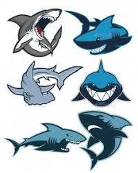 Resultado de imagem para shark nose logo Logos Deportivos 3f2215e3fcecb