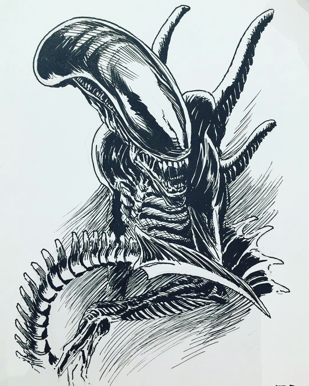 predator vs jason coloring pages - photo#48