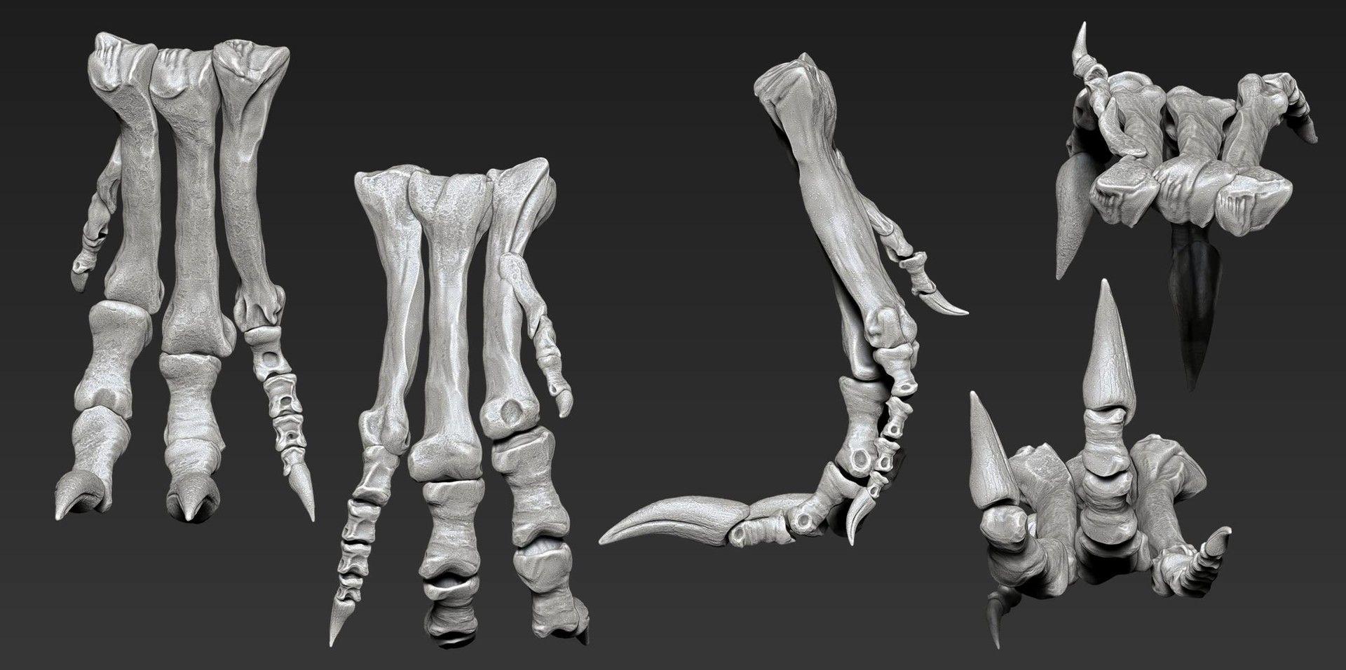 ArtStation - The skeleton of Allosaurus, Vitamin Imagination