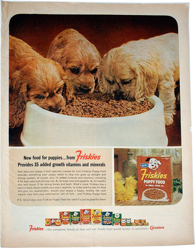 Vintage Friskies Dog Puppy Food Print Ad 1964 1960 S Food