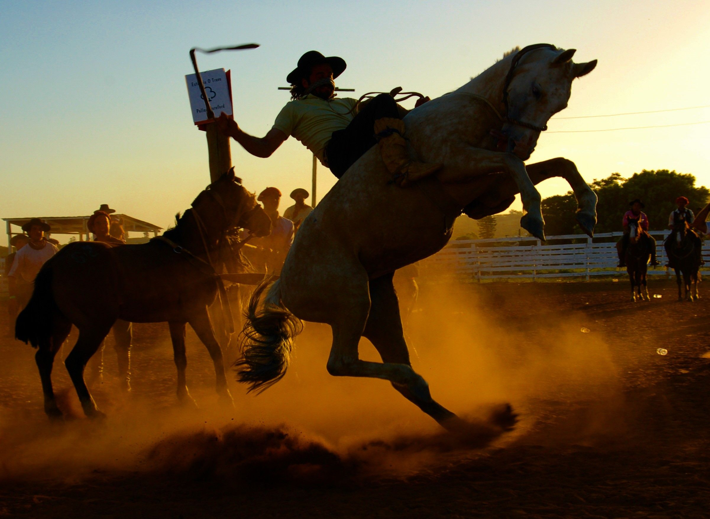 Rodeo Computer Wallpapers Desktop Backgrounds 2401x1756 Id 431119 Cowgirl And Horse Rodeo Rodeo Life