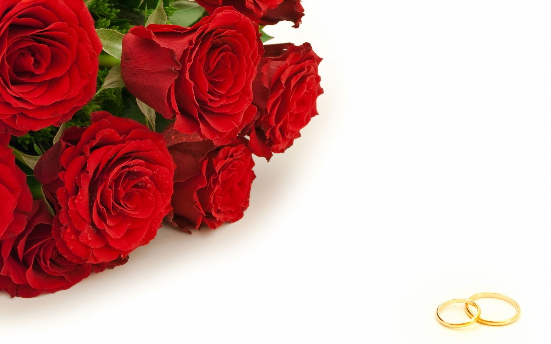 Arsen44511am Rezultaty Poiska Dlya Gnq51igk5heh2xi Rose Wallpaper Wedding Photography Business White Flower Wallpaper