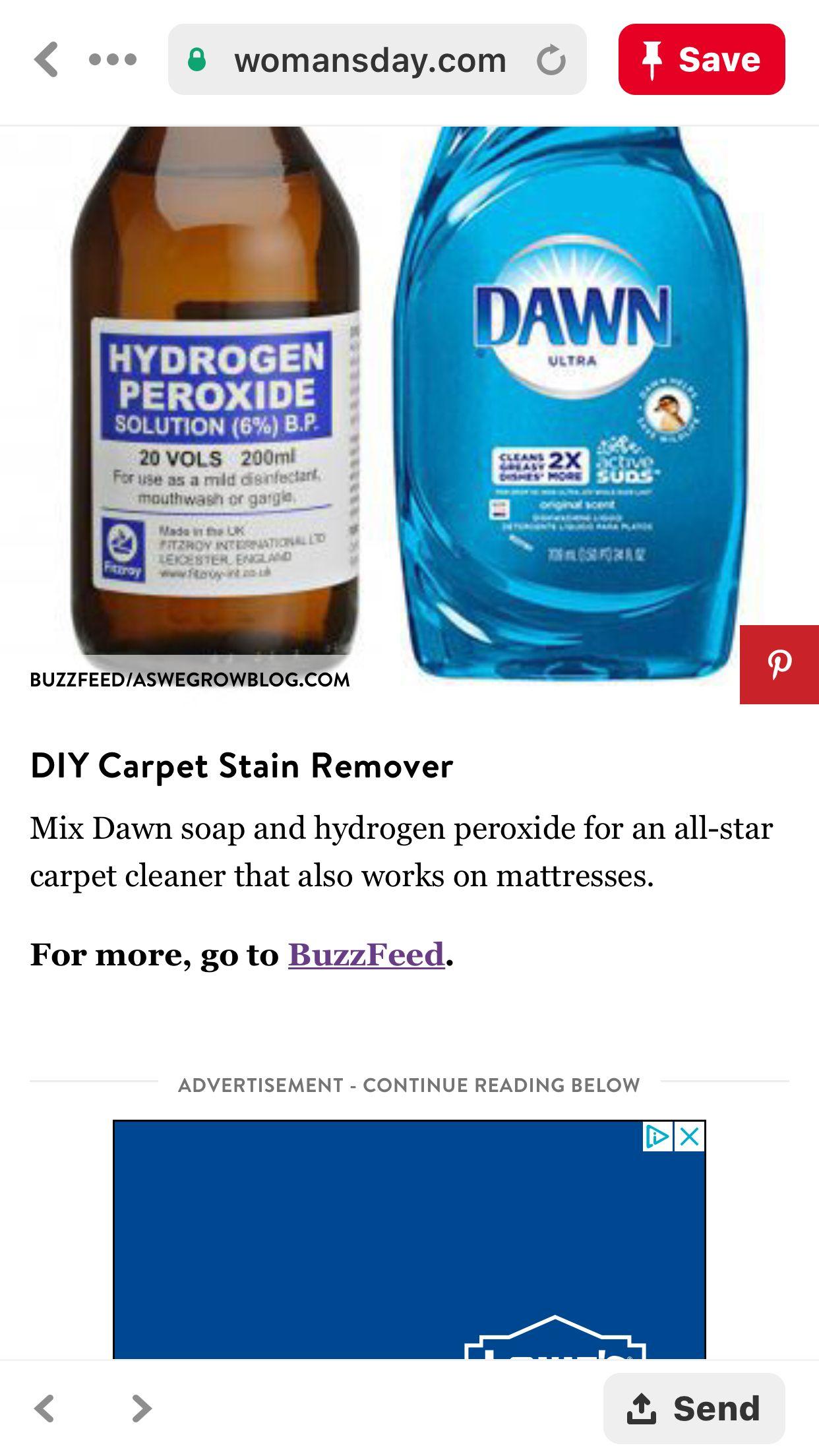 Pin By Amy Chouinard On House Sale Diy Carpet Stain Remover Stain Remover Carpet Diy Carpet