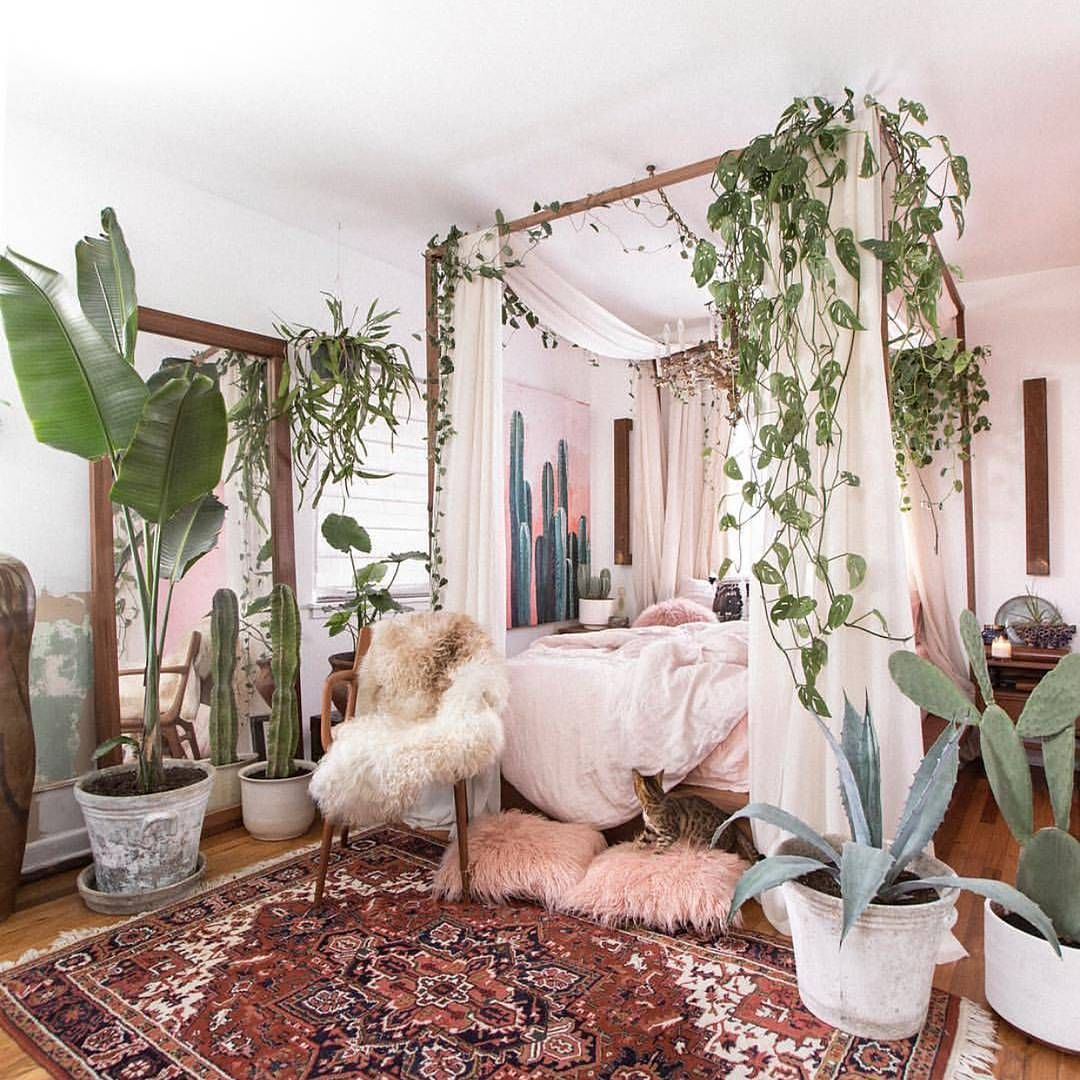 New Year new room idea #stellyclothing #sourceunknown