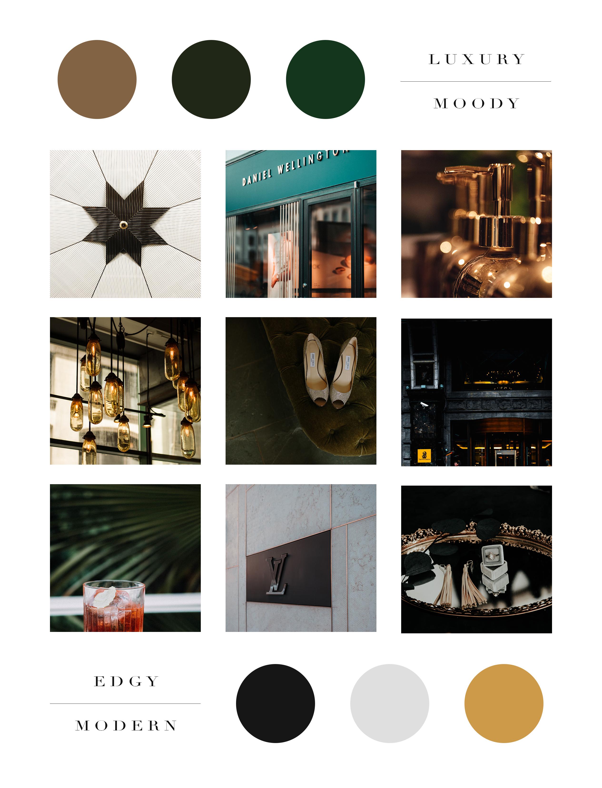 Buena Suerte Brand Web Design Dragonfly Ave Green Colour Palette Black Color Palette Business Colors