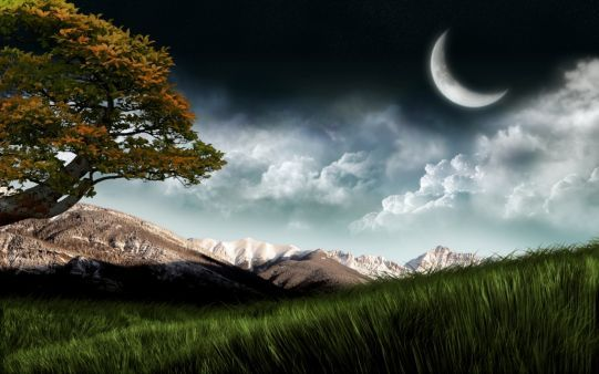 Night Tree Art Photography Hill Dreamy Fantasy Hd 3d Moon Hd Nature Wallpapers Nature Desktop Nature Desktop Wallpaper