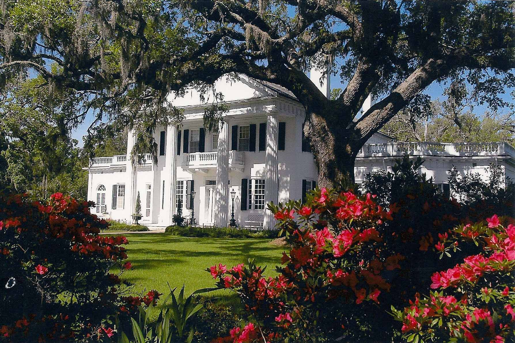 Orton Plantation Google Search