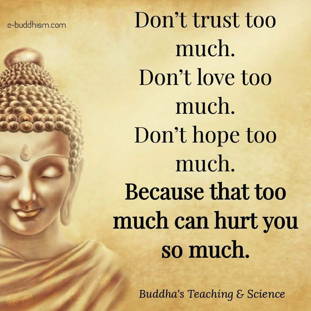 Everything In Moderation Life Quotes Life Quotes Buddha Quote