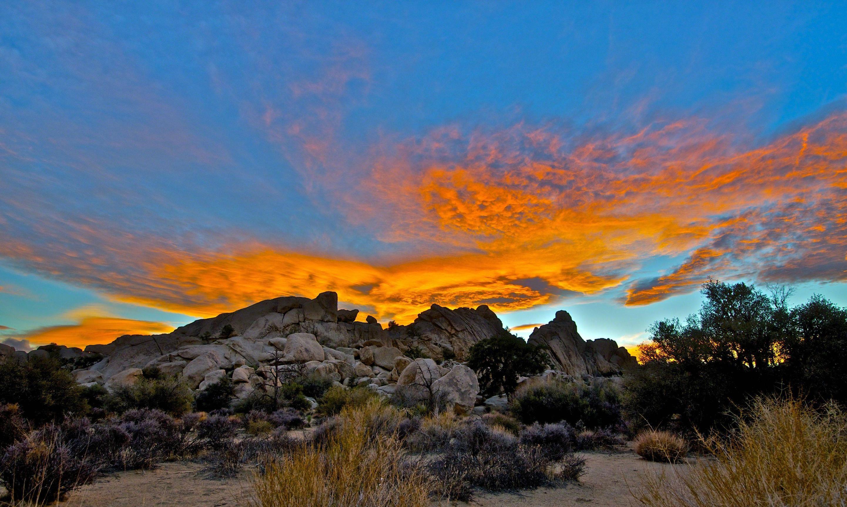 Mojave, Cool