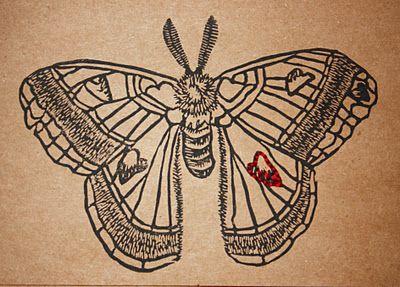 Hand carved lino cut stamp moth, Kellee Wynne Conrad