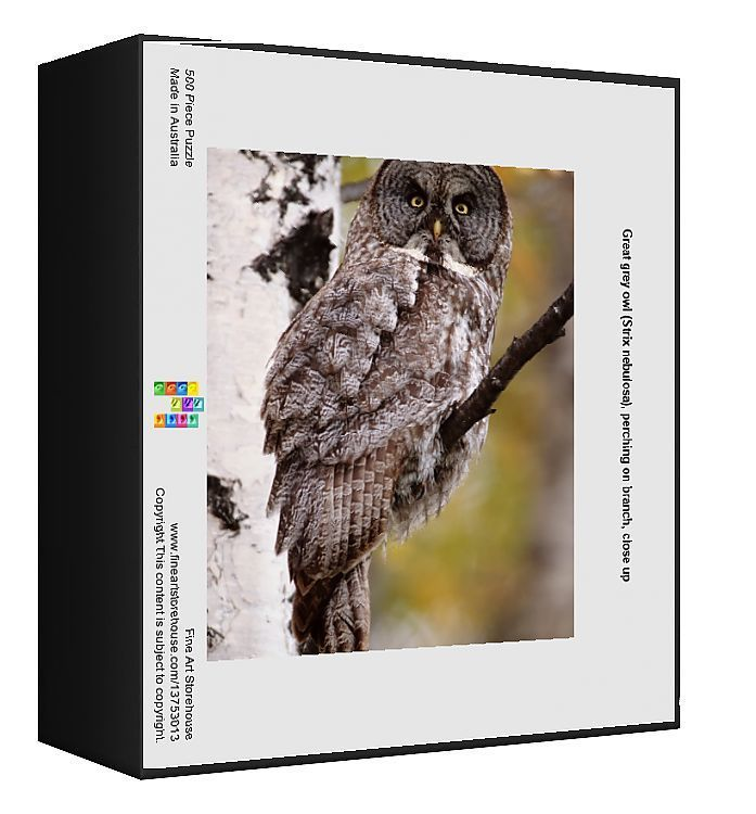 Jigsaw Puzzle. Great grey owl (Strix nebulosa), perching on branch, close up. 500 Piece Jigsaw Puzzle made in Australia