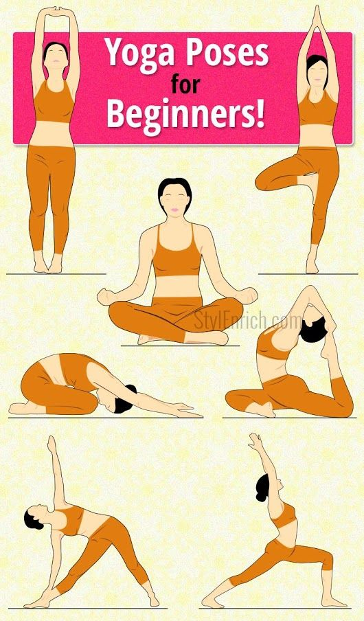 Yoga Poses For Beginners to Start Your Day Healthy and Stay Fresh