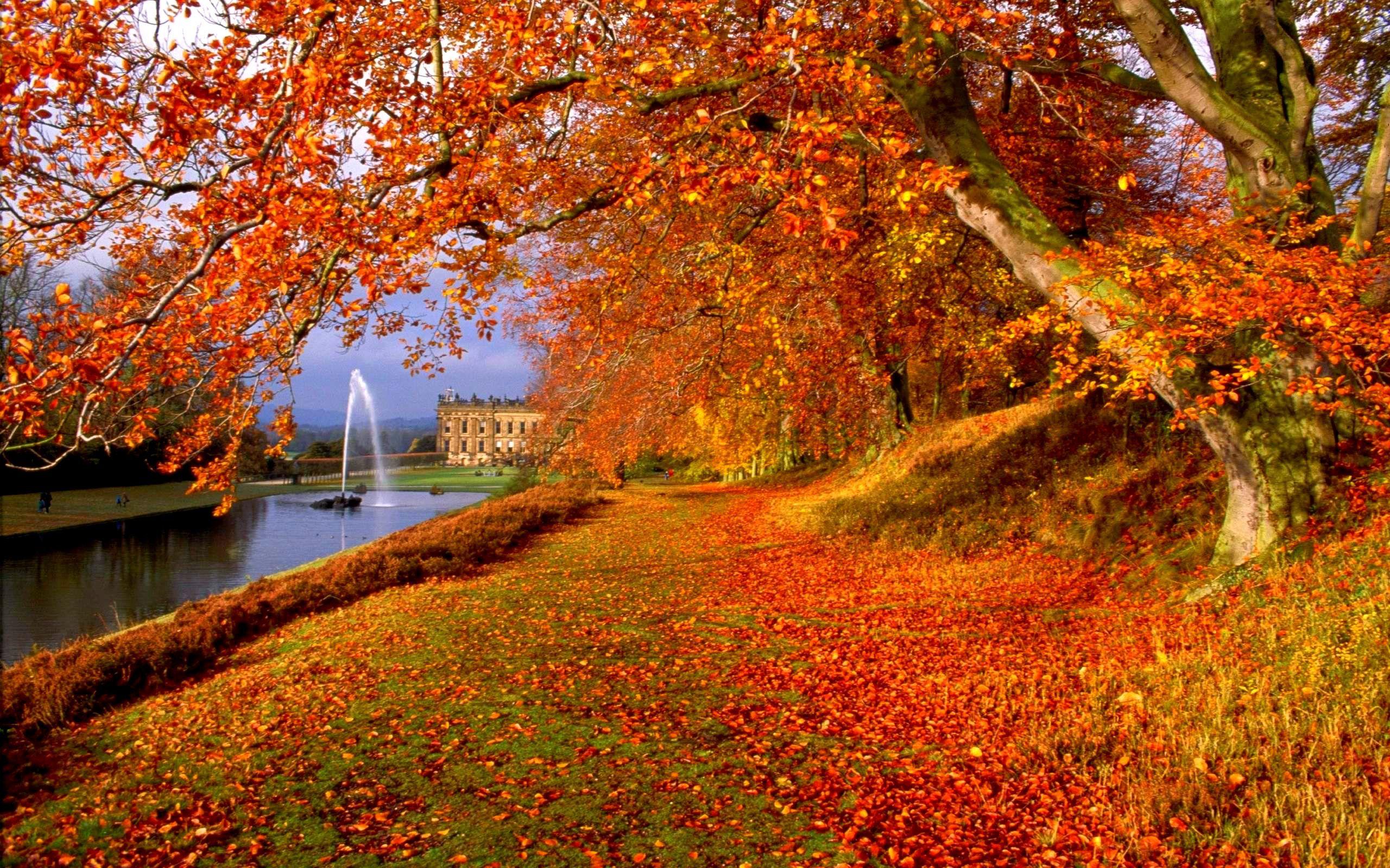 Interpretation of a dream in which you saw «Autumn ...