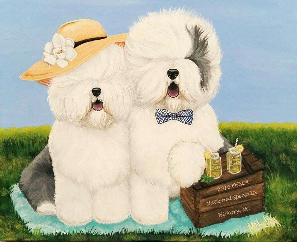 Pin By Lulu Rieth On Funny In 2020 Old English Sheepdog English Shepherd Ship Dog